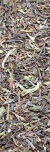 Darjeeling Tee Makaibari Bio