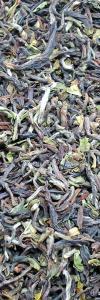 Darjeeling Tee Hausmarke