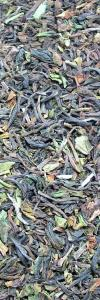 Darjeeling first flush Bio