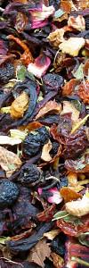 Früchtetee Schwarze Johannisbeere Bio