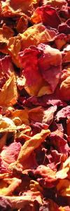Rosenblüten geschnitten Bio