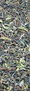 Darjeeling Tee Arya