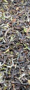 Darjeeling Tee Dootheria
